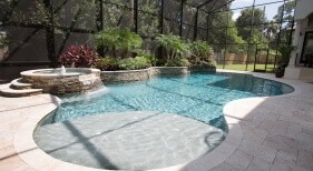 006 - Freeform Sunshelf Pool with Raised Spa and Landscape