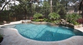 009 - Freeform Pool with Raised Spa and Landscape