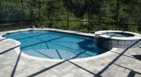 0160 - Freeform Pool and Raised Spa with Sunshelf