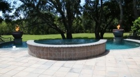 022 - Freeform Pool and Raised Spa with Fire Bowls