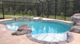 421 - Custom Freeform Pool with Sunshelf and Raised Spa