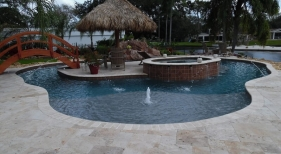 426 - Freeform Sunshelf Pool with Island and Raised Spa