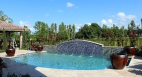 2005 - Freeform Pool with Raised Scupper Wall